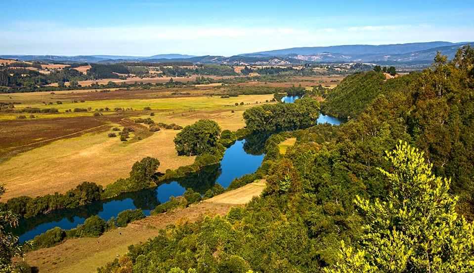 Mindfulness -Valle Rio Bueno